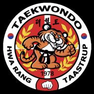 Taekwondomaster